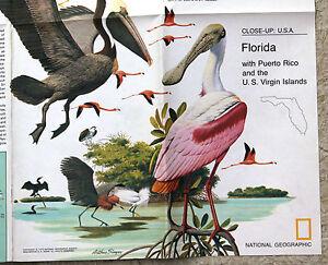 National-Geographic-Close-up-USA-Florida-Puerto-Rico-Virgin-Isles-November-1973
