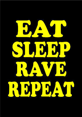 Eat Sleep Rave Repeat Fat Boy Slim Calvin Harris Mix Print Poster Various Sizes