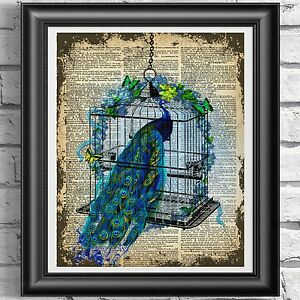 Vintage-Peacock-Flowers-Love-Dictionary-Print-Page-Cage-Wall-Art-Picture-Bird