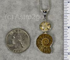 AMMONITE SEA URCHIN PENDANT $79 Sterling Silver Fossil Jewelry STARBORN CREATION