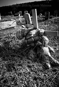 Holt-Cemetery-New-Orleans-Potter-039-s-Field-13x19-034-Print-SIGNED-by-Louis-Maistros