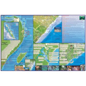 Franko Maps Cancun Riviera Maya Dive Creature Guide 17 X 25 Inch eBay