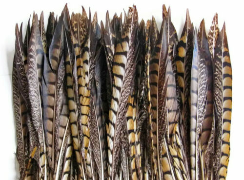 "5 Pcs LADY AMHERST PHEASANT Feathers 30-40/"" Top Quality! Craft//Hats//Costume"