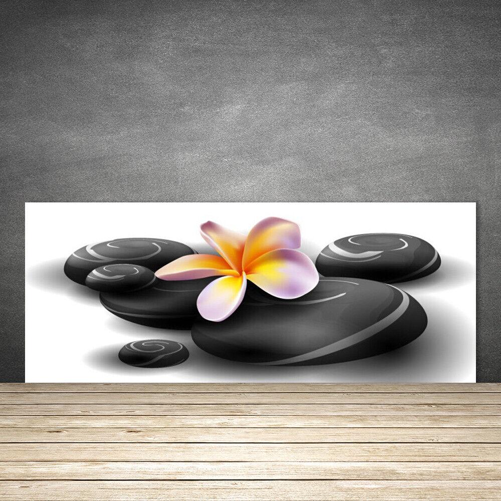 Crédence de cuisine en verre Panneau 125x50 Nature Fleurs Pierres