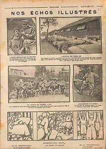 Chiens-de-Guerre-a-Pau-Poilus-Hopital-de-Plein-Air-Soldats-Blesses-1915-WWI