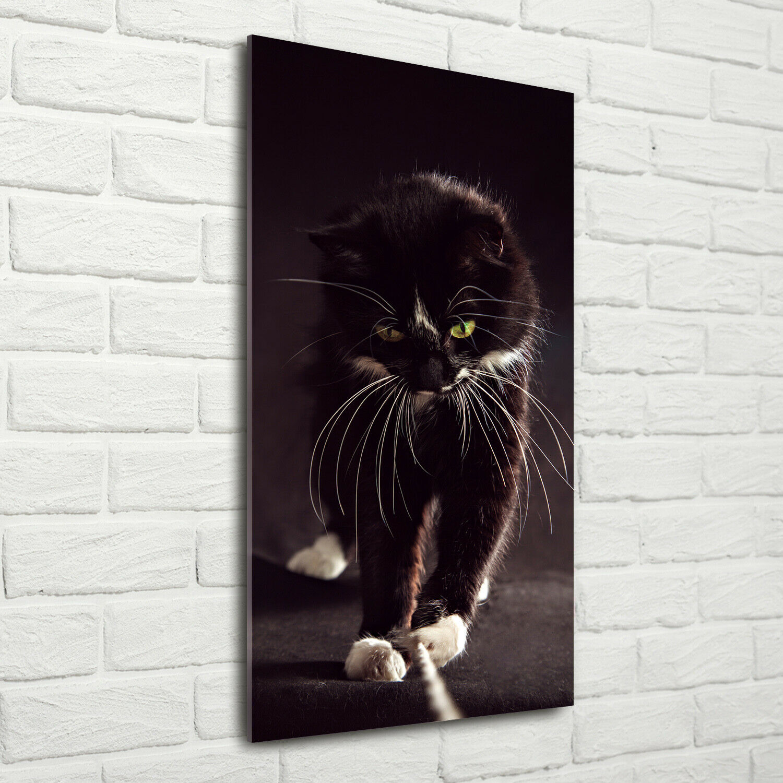 Wand-Bild Kunstdruck aus Hart-Glas Hochformat 70x140 Schwarze Katze