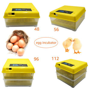 48/56/96/112 Digital Egg Incubator Hatcher Temperature Control Automatic Turning