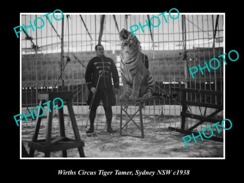 OLD 6 X 4 HISTORIC PHOTO OF WIRTHS CIRCUS TIGER TAMER, SYDNEY c1938