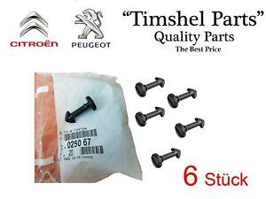 6-St-copertura-del-motore-Clip-Peugeot-206-307-407-607-Expert-Citroen-c4-1-8-2-0-16v