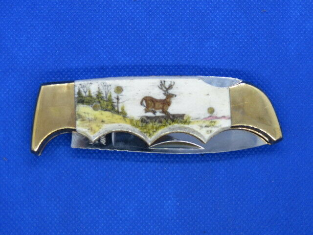 KERSHAW 1040. BONE SCRIMSHAW FOLDING KNIFE WITH BIG BUCK ON HANDLE KAI