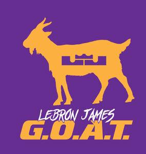 Lebron James G O A T Shirt Goat Los Angeles Lakers Basketball Mvp King Lbj Lal Ebay