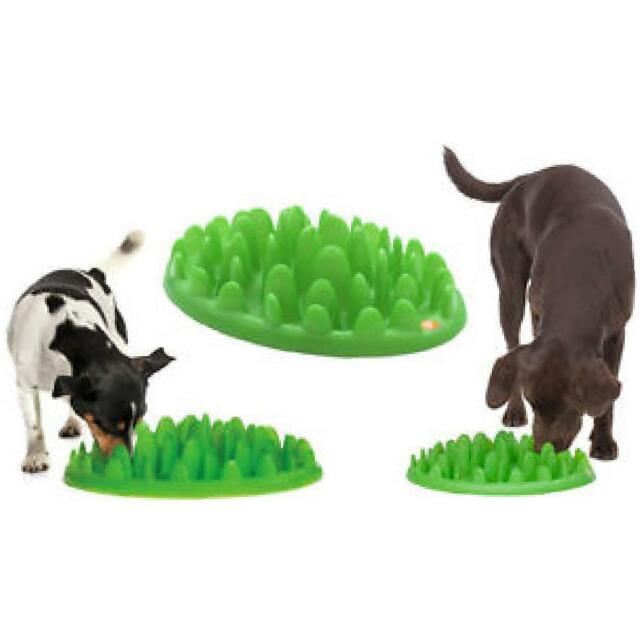 slow against fun dp petbaba feeder eating interactive feed in bowl bloat maze dish nonslip dog