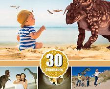 30 Dinosaurs Tyrannosaurus Rex T-Rex animal, clipart, digital overlay, PNG