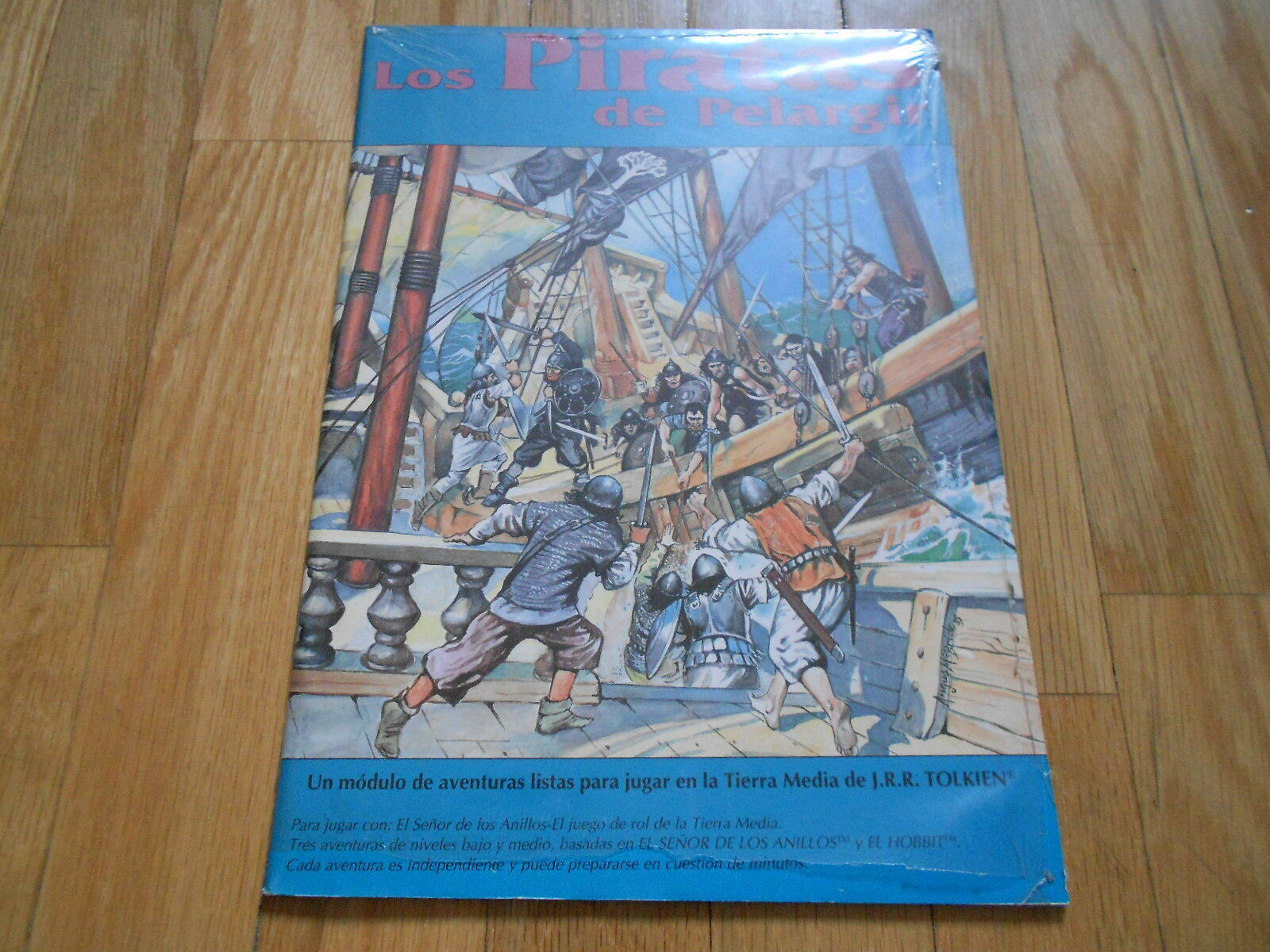The Lord of the Rings - the Pirates of Pelargir - Set Role Play - Joc