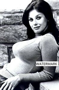 """Lana Wood 4""""x6"""" super busty tight sweater picture 4&#034 ..."""