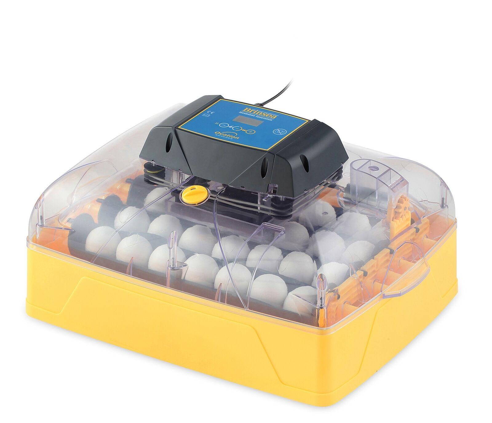 Brinsea Products USAF36C Ovation 28 Advance Automatic Egg Incubator One Dimensione