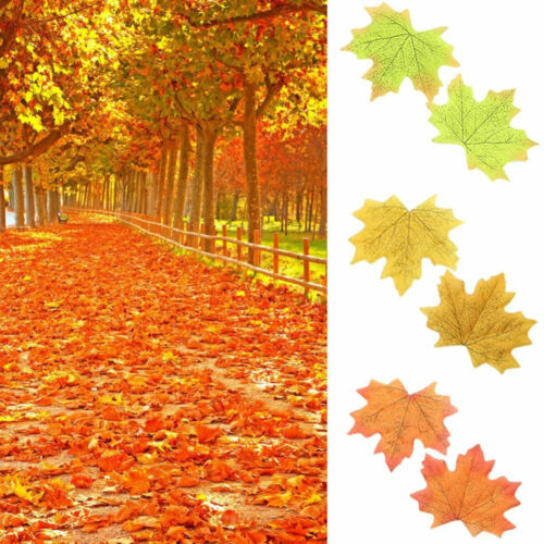 100pcs Fall Silk Leaves Wedding Party Favor Autumn Maple Leaf Decoration Set Hot