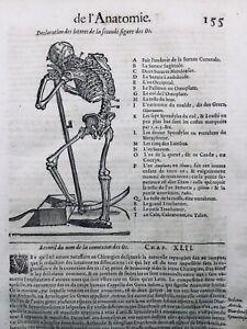 Squelette anatomie 1614 Ambroise Paré Rare Gravure Bois Orthopédique Médecine