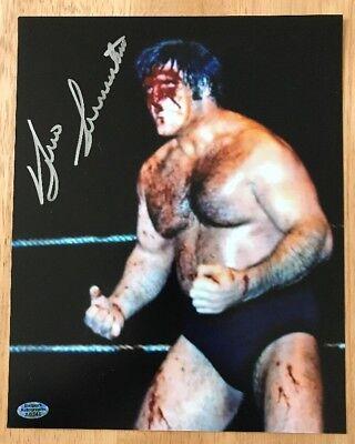 David Sammartino Signed Autographed 8x10 Photo  w//COA W//Bruno WWE WWF