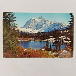 Vintage-Postcard-Snowy-Mountain-Lake-Forest-Scenery-Alfred-Mainzer-Inc-NY