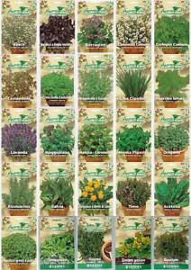 Herb-Seeds-32-VARIETIES-TO-CHOOSE-FROM-Everything-you-need-is-here-Top-Quality