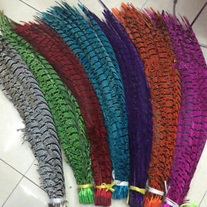 FREE 10-50 PCS Lady Amherst Pheasant feathers 80-90 cm decoration. Performances