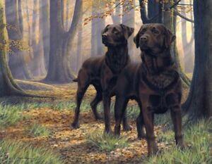 Nigel Hemming THE BEECH BOYS Chocolate Labradors Labs Choccy Gun Dogs Pair