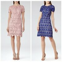 2016 New Reiss Iris & sapphire-blue Orchid Lace Dress RRP £245 Size 6,8,10,12