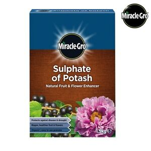 Miracle-Gro-Natural-Sulphate-of-Potash-Fruit-amp-Flower-Enhancer-Plant-Food-1-5kg