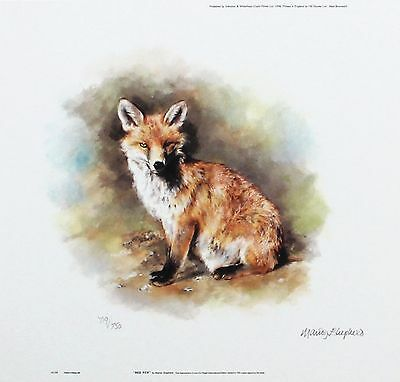 "MANDY SHEPHERD /""Red Fox/"" wildlife print LTD ED SIGNED SIZE:23cm x 24cm NEW RARE"