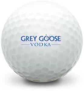 Grey Goose Vodka Logo