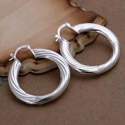 New Women Fashion 925 Sterling Silver Plated Hoop Studs Dangle Earrings Jewelry