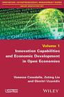 Innovation Capabilities and Economic Development in Open Economies by Zeting Liu, Dimitri Uzunidis, Vanessa Casadella (Paperback, 2015)