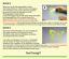 Indexbild 11 - Spruch WANDTATTOO Vergangenheit ist Zukunft Augenblick Wandaufkleber Sticker a