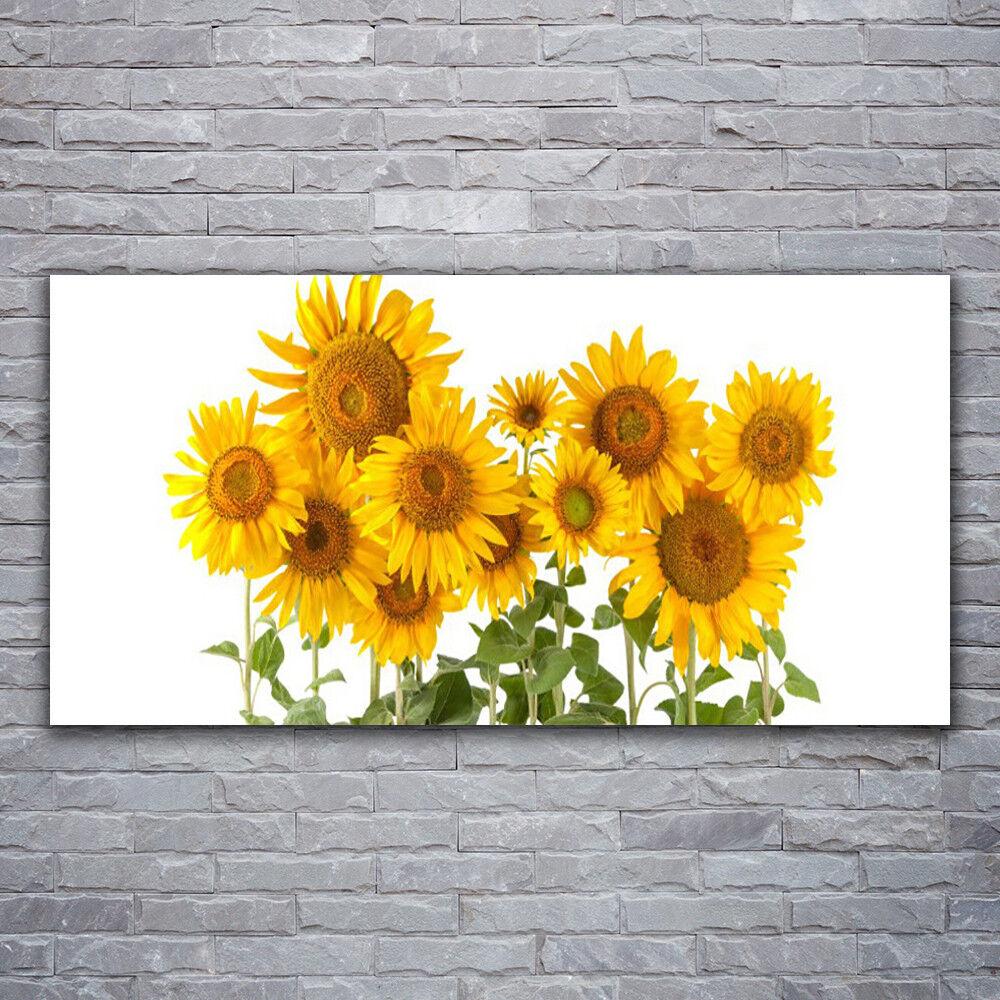 Photo sur toile Tableau Image Impression 120x60 Floral Tournesols