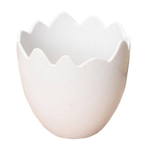 Oeuf en forme de Fleur Plante Pot récipient blanc N3