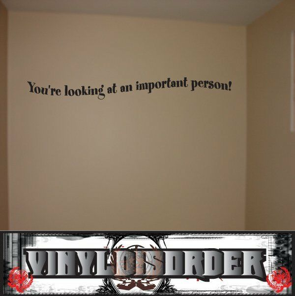 You're looking at an important important important person  Wall Quote Mural Decal-closetquotes21 f995da