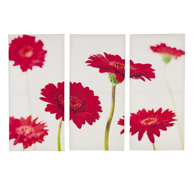 Set of 3 Triptych Red Flower Canvas Wall Art Flowers Picture Home ...