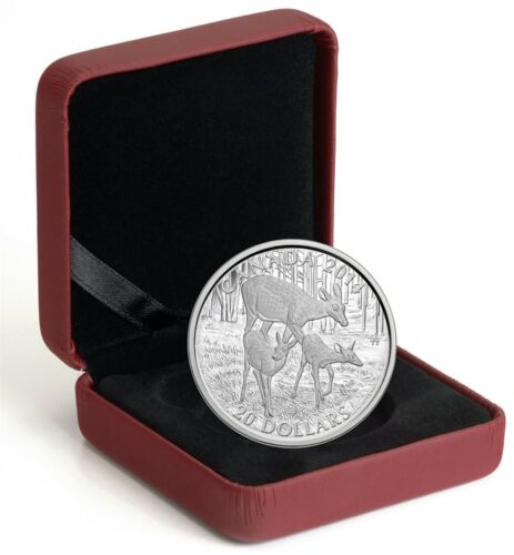 A Doe /& her Fawns 2014 White Tailed Deer Canada $20 Dollars Silver Poof Coin