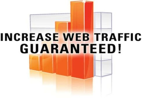 Traffic Website Unlimited  for 30 Days ALL accepted Website Adult-casino