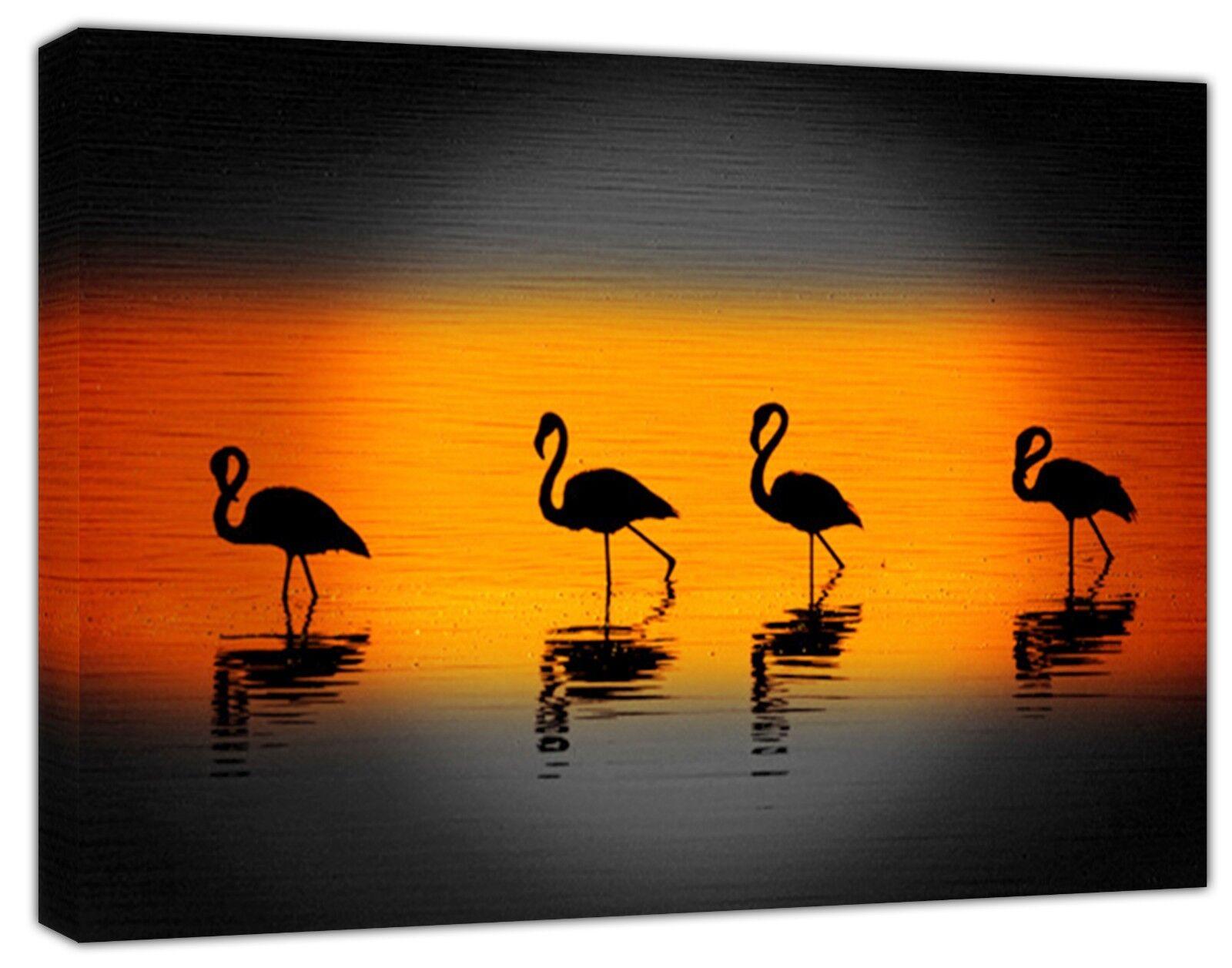 FLAMINGOS FAMILY SUNRISE  PHOTO PRINT ON FRAMED CANVAS  WALL ART HOME DECORATION