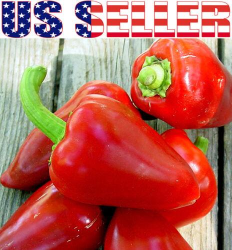 30 ORGANICALLY GROWN Italian Sweet Pimento Pepper Seeds Heirloom NON-GMO USA!