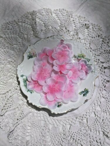 100 pcs Rose en Soie de Pétales De Fleurs Mariage Fête St Valentin Usa Vendeur