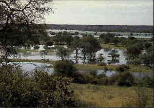 NAMIBIA-Suedwestafrika-Postkarte-Post-Card-SWA-color-AK-Okavango-Fluss-River
