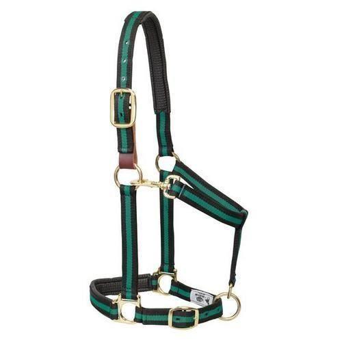 Weaver Padded Breakaway Adjustable Nylon Halter Breakaway Fuse and Flat Throat