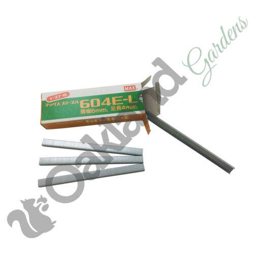 6mm 10 Box of 4800 Max Tapener Staples Tying Machine For Max Gun 604EL Plant