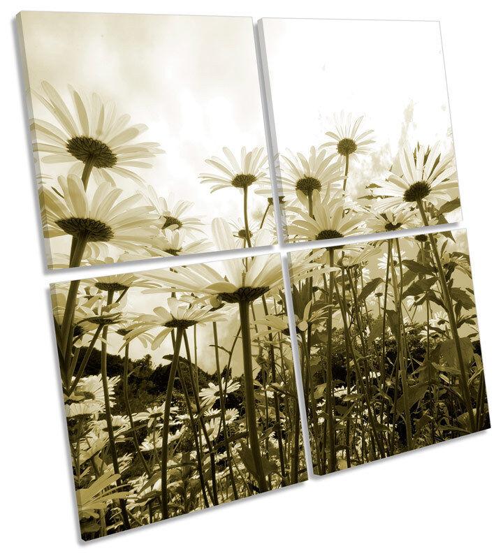 Daisy SKY Floreale Fiori Multi Tela Wall Art SQUARE Stampa