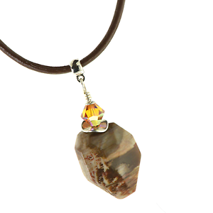 Arizona-Petrified-Wood-Artisan-Faceted-Pendant-Necklace-with-Leather-Cord-Leo