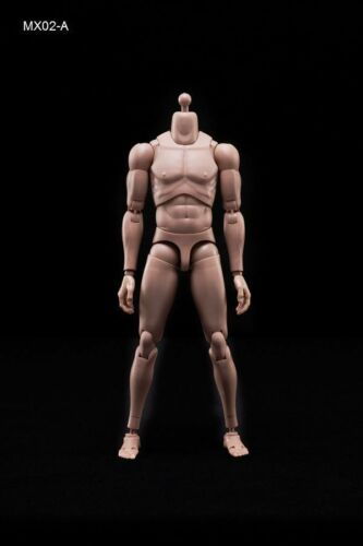 1//6 Standard Shoulder Male Body MX02-A Suntan Skin Strong Muscle Figure Model