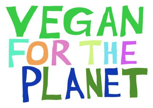 T Shirt Adult S M L XL Vegan For The Planet Tee Eco Warrior Slogan Eco Hippy